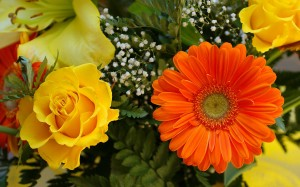 Picture at http://1ms.net/flowers-bouquet-garden-gallery-desktop-131186.html